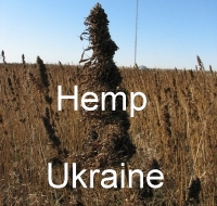 Hemp Ukraine - Home Page